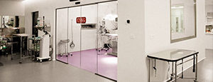 auditoria acustica clinicas medicas, clinicas dentales, centros medicos
